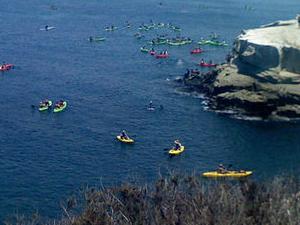 La Jolla Sea Caves Kayak Tour Photos