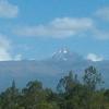 Cottage at the slopes of Mt Kenya