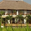 Cozy Villa spacious Room ricefields