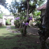 D'Tegale Homestay offers accommod