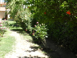 Nature lovers and orchards