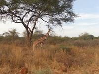 Out Going  family Nakuru Kenya