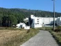 SURF SEASIDE and MOUNTAIN