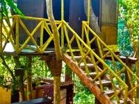 Treehouse getaway with pool Nth Goa