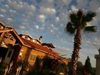 Bahaus Hostel Resort