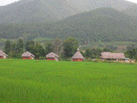 Yawning Fields Guesthouse