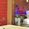Avista Resort and Spa