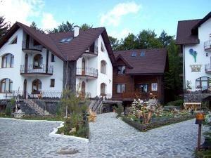 Vila Crocus Brasov