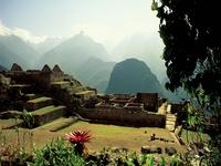 Cuzco Express