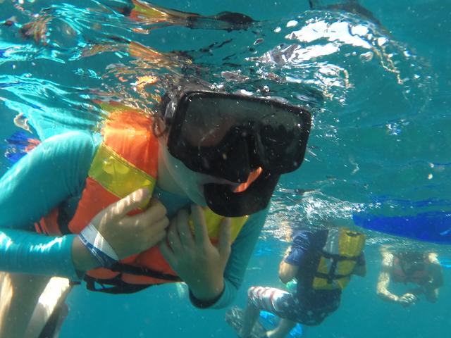 Marine Park Snorkeling Private Tour Photos