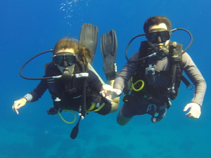 Scuba Diving Private Tour for Group of 4 Divers