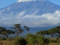 Mount Kilimanjaro Climbing