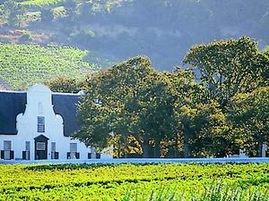 Cape Winelands Experience Photos