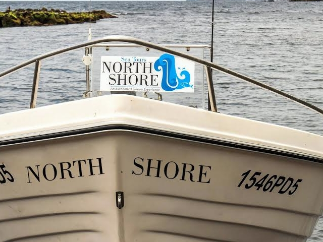 Boat Rental Photos