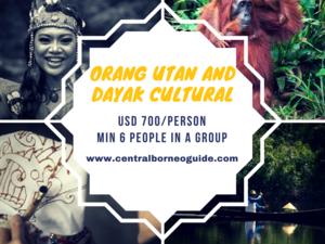 Orang Utan and Dayak Cultural Tour Fotos