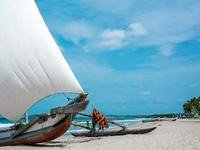 Wild Sands Tour - Mirissa Beach