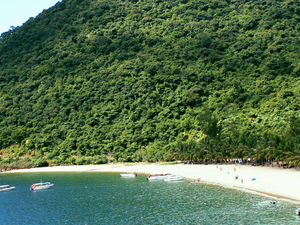 Cham Islands - Snorkeling Tour Photos