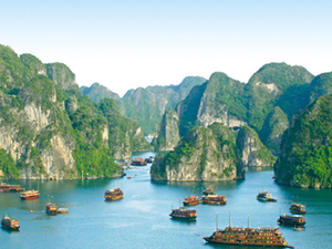 Timeless Beauty of Vietnam Photos