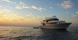 Dive Safari in the Red Sea Photos