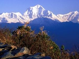 Annapurna Poon Hill Trekking Fotos