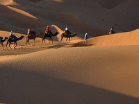 Sahara Desert Trip from Marrakech