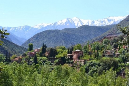 Ourika Valley Half-Day Trip from Marrakech Photos