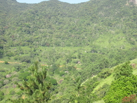 Hill & Coastal Tour