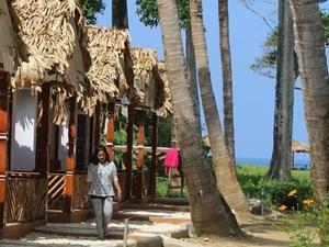 Heal in Neil - Andaman Island