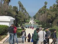 Hamma Garden