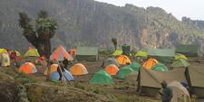 Safari Camping Tent