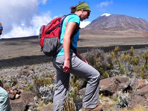 Climbing Mt. Kilimanjaro Marangu Route Fotos