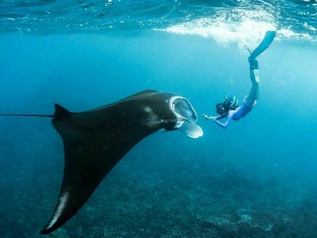 Explore Nusa Penida Island - Snorkeling Photos