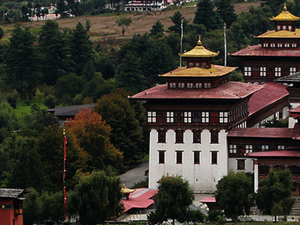 All Bhutan Tour Photos