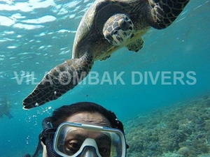 Snorkeling Trip: Private Glass Bottom Boat Around Gili Meno