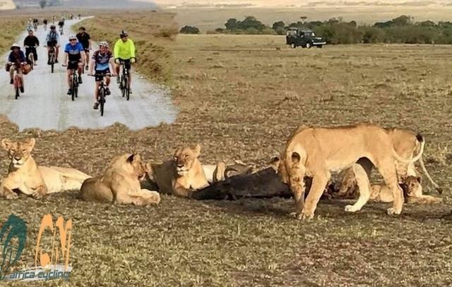 Adventure Cycling Kenya Tour Photos
