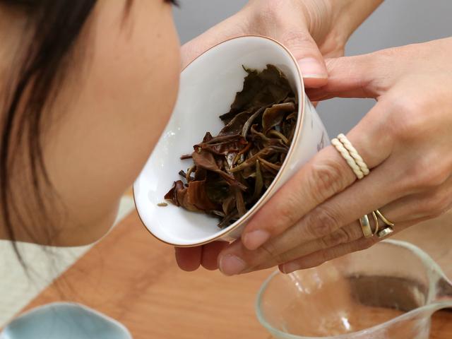 Tea Tasting Experience Photos