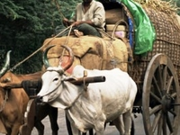 Offbeat Tours in India