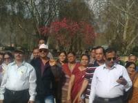Indian Group In Srinagar
