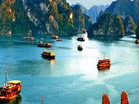 Halong bay 2 days 1 night on 4* cruise