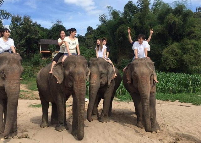 Full Day Kayaking to Pakou Cave, Elephant Riding and Villages Photos