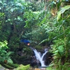Treking with Rain Forest..! Khao Luang National Park