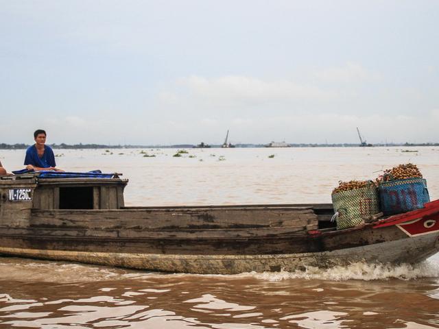 Mekong Delta Tour Full Day Photos