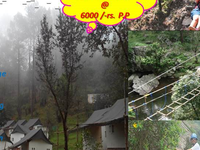 Adventure Camp In Himalayan Wilderness