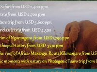 Africa Escapades Intro 5