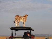 East Africa Safari Guide Charles Sonko