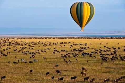 Meru, Sweetwaters, Lake Nakuru & Masai Mara Elephants Photos