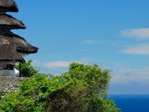 Bali Amazing Island One Day Tour Photos