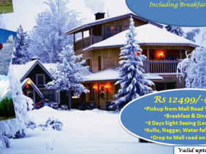 Manali Package Photos