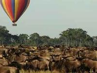 3daysmasai Mara Camping Joining Safaris