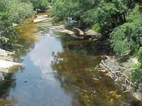 Alapaha River